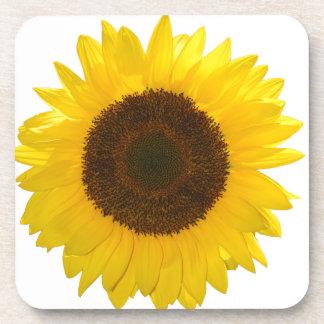 Sunflower Coaster