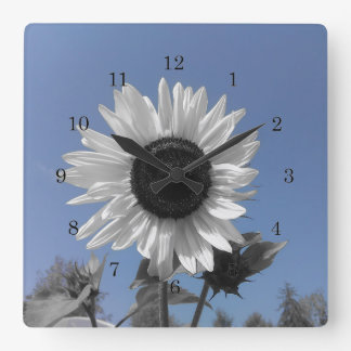 Sunflower Color Splash Square Wall Clock
