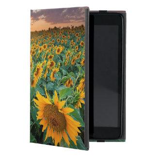 Sunflower Field in Longmont, Colorado Case For iPad Mini