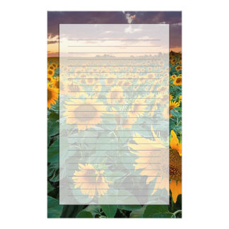 Sunflower Field in Longmont, Colorado Stationery
