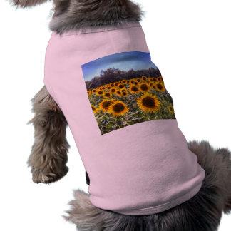 Sunflower Fields Of Dreams Shirt