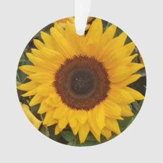 Sunflower Flower Floral Photography Ornament