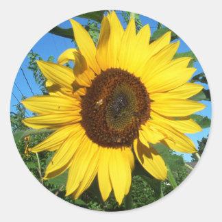 Sunflower Giant Round Sticker | Bright Yellow Blue