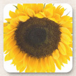 Sunflower Gifts Coasters