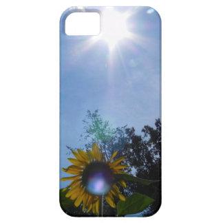Sunflower Glow iPhone 5 Case