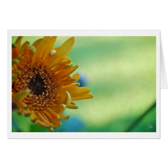 Sunflower [Greeting Card] Card
