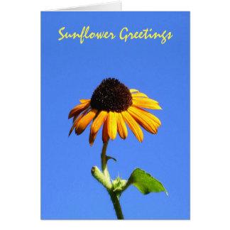 Sunflower Greetings Autumn Beauty Greeting Card