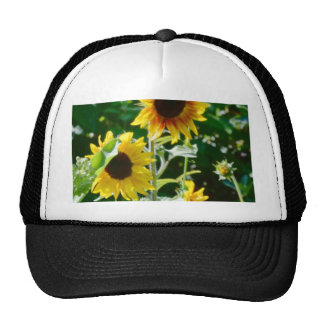 Sunflower Happiness Trucker Hats
