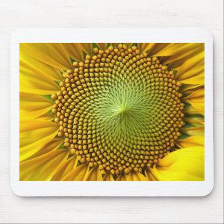 Sunflower Image Mousepads