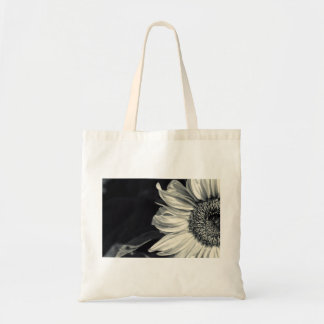 Sunflower in black-and-white