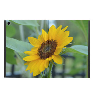 Sunflower in Bloom iPad Air Cover