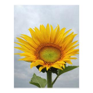 Sunflower in the Sky Custom Flyer