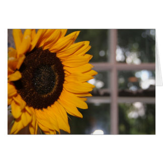 Sunflower in the Window Card