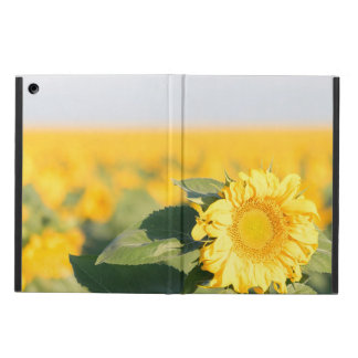 Sunflower iPad Air Cover
