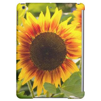 Sunflower iPad Air Cases