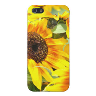 Sunflower iphone case iPhone 5 cover
