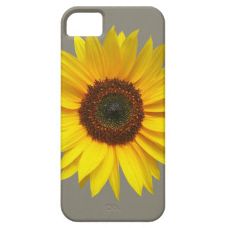 Sunflower iPhone SE/5/5S Barely There Case