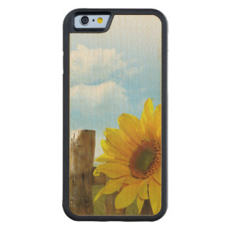Sunflower Nature Beauty Carved® Maple iPhone 6 Bumper