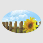 Sunflower Nature Beauty Oval Stickers