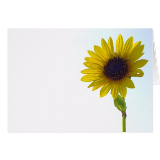 Sunflower Notecard Greeting Card