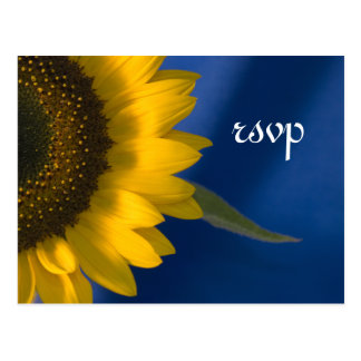Sunflower on Blue Wedding RSVP Response Postcard