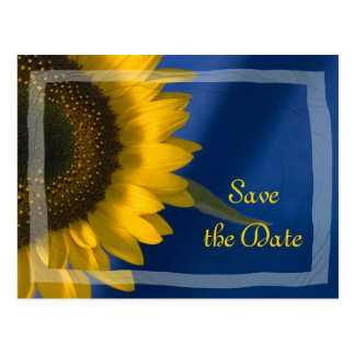 Sunflower on Blue Wedding Save the Date Postcard