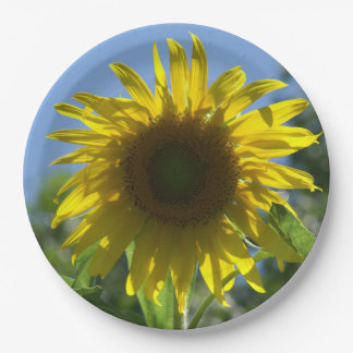 Sunflower, Paper Plates. 9 Inch Paper Plate
