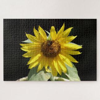 Sunflower, Photo Puzzle. Jigsaw Puzzle