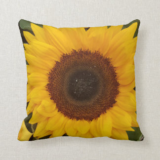 Sunflower Photography Floral Pillow