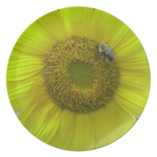 sunflower plate with bumblebee