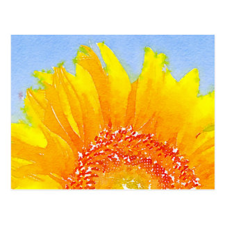 Sunflower! Postcard