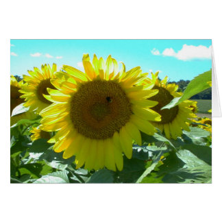 Sunflower Power--Card Card