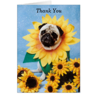 Sunflower Pug Thank You Card