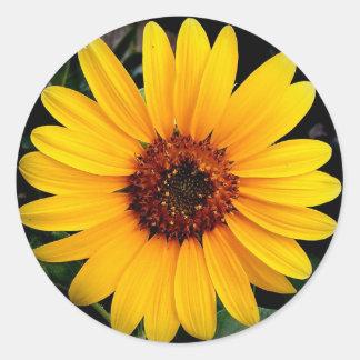 Sunflower Round Sticker