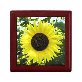 Sunflower Sensation Wood Gift Box