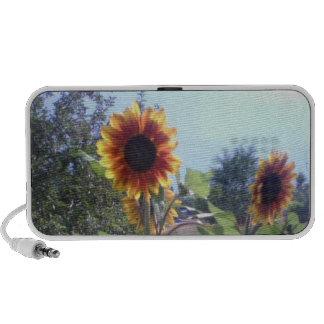 Sunflower Speakers