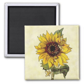 Sunflower Square Magnet