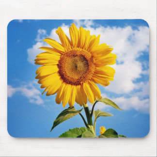 Sunflower - Sunflower Four Mouse Pad