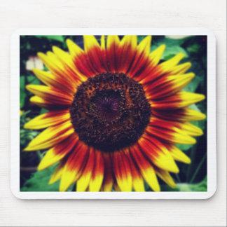 Sunflower Sunrise Mouse Pad