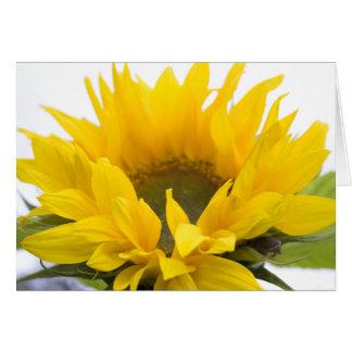 Sunflower ... thank you card