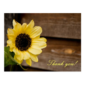 Sunflower thank you postcard