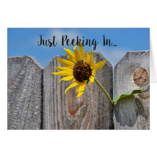 Sunflower Through Fence Friendly Card