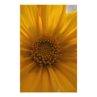Sunflower Tree Stationery Paper