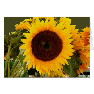 Sunflower with bee card
