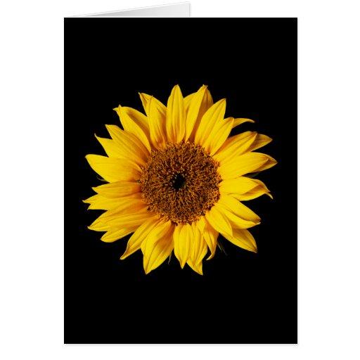 Sunflower Yellow on Black - Customized Sun Flowers Greeting Cards