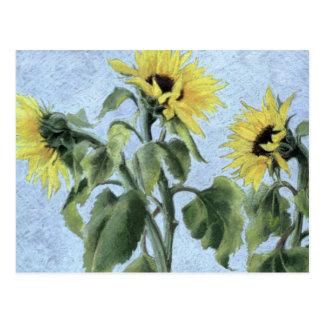 Sunflowers 1996 postcard