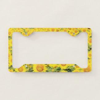 Sunflowers Abruzzo Flowers Summer Sunflower Yello Licence Plate Frame