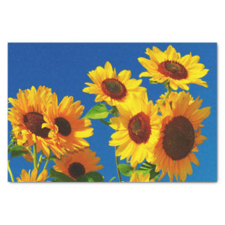 Sunflowers Blooming Tissue Paper