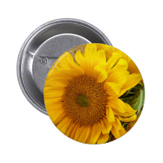 Sunflowers Buttons