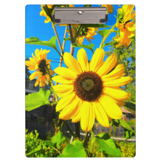Sunflowers Clipboard